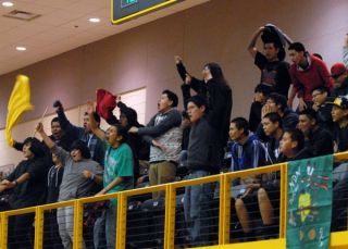 ndn turtles cheering